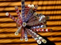 Papírová brčka jsou novým trendem při záchraně planety