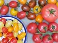 Různé odrůdy, tvary, barvy a různé chutě