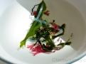 Směs řas Japonský salát z mořské zeleniny