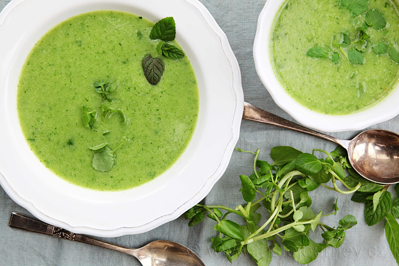 Dietní a velmi zdravá- to je polévka z potočnice