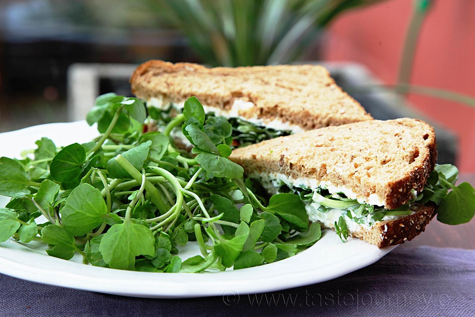 Potočnice jako ideální náplň do salátů i do sendvičů