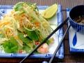 Vietnamský salát ze zelené papáji je  opravdovou lahůdkou