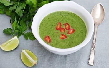 Bylinková super zdravá zelená polévka. Bylinky však nevařte, jen rozmixujte.